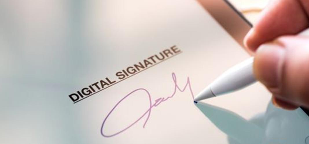 Chữ ký thường